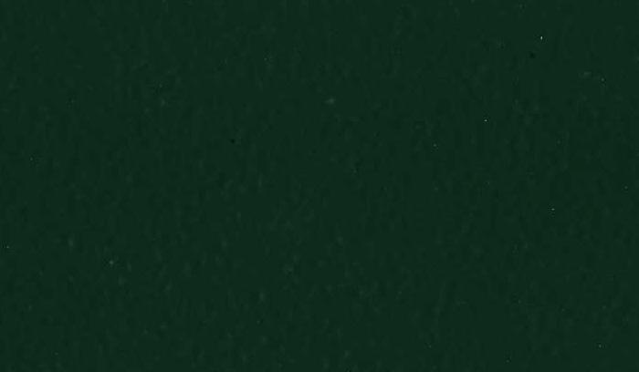 Colori Inferriate VERDE 6005 BUCCIATO