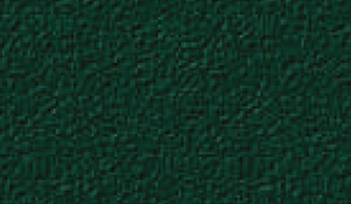 Colori Inferriate VERDE 6009 BUCCIATO